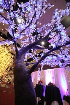 LED tree Led Tree, Weeping Willow, Cherry Blossom Tree, Event Lighting, Bay Area, Special Events, Lights, Floral, Wedding