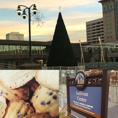 Lights on at Gallivan Plaza Friday from 4-6pm! We will be there with some new Purrk merch for sale, along with #free #cookies and #hotchocolate! #slc #catcafe