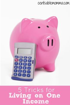 If you either are living on one income out of choice or necessity, check out these 5 tricks for living and surviving on one income and creating a family budget that works for you.