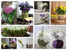 Create beautiful spring decoration with spring flowers