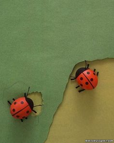Ladybugs who lunch don painted-on faces and construction-paper attire (dots are made using a hole punch). Each pair of legs is one piece of yarn glued underneath; antennae are embroidery floss dipped in glue and dried to stiffen.