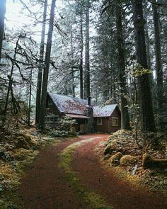 I live in the woods similar to hear, with a long driveway. Very peaceful. I love it