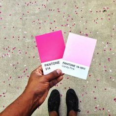 Pantone paint chips in hot pinks, teals, soft pink, black, royal blue, and yellow.