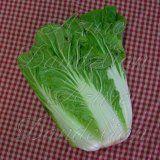 Heirloom Chinese Michihli Cabbage Seed Heirloom Chinese Michihli Cabbage Seed sustainable living garden [1-28-85] - $2.50 : Azure Dandelion, Heirloom Seeds and Folk Art