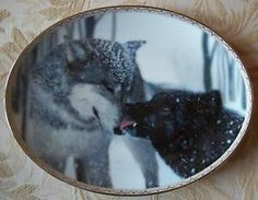 Collectible Wolf Plates | Tender Moments Wolf Plate Devotion Bradford Exchange | eBay