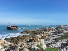 Agulhas National Park opens new chalets - http://www.environment.co.za/national-parks/agulhas-national-park-opens-new-chalets.html
