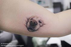 """I want to tattoo my dog& nose"" - Tattoo - .-""Ich möchte die Nase meines Hundes tätowieren"" – Tattoo – ""I want to tattoo my dog& nose"" – Tattoo – tattoo like to - Small Animal Tattoos, Small Tattoos, Animal Tattoos For Women, Dog Nose, Dog Paws, Cute Cat Tattoo, I Tattoo, Tattoo For Dog, Grey Tattoo"