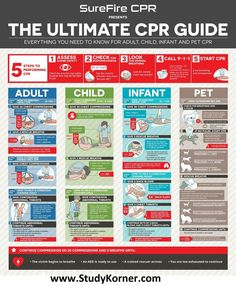 5 Steps to Perform CPR in Adults, Child, infant and Pet - Medical eStudy How To Do Cpr, How To Perform Cpr, Bola Medicinal, First Aid Cpr, Nursing School Notes, School Nurse Office, Medical School, Nursing Tips, Funny Nursing