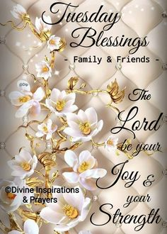 Tuesday Blessings! Happy Tuesday Morning, Morning Pictures, Morning Pics, Tuesday Quotes, Morning Blessings, Morning Quotes, Prayers, Blessed, Lord