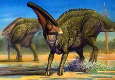 Dinosaurusi.com - Dinosaur Pictures! The Dinosaurs, Dinosaurs, dinosaur, dinosaur pictures, dinosaur photos, illustrations of dinosaurs, dinosaur collection, dino photos, Dinosaurs images, Dinosaurs images, dinosaurs pictures, - duck-billed dinosaurs