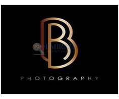 Bernard Richardson Photography Dubai - - Best Place to Buy Sell and Find Job Ads in Dubai P Logo Design, Graphic Design, Typography Logo, Lettering, Logos, Job Ads, Find A Job, A Boutique, Bees