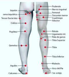 Acupressure More Effective Than Physical Therapy - Acupuncture Hut Cupping Therapy, Massage Therapy, Ear Reflexology, Medical Anatomy, Massage Techniques, Traditional Chinese Medicine, Qigong, Alternative Medicine, Natural Medicine