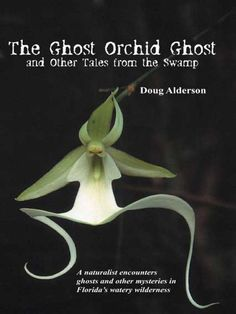 """Read """"The Ghost Orchid Ghost And Other Tales from the Swamp"""" by Doug Alderson available from Rakuten Kobo. Florida's famous swamps—from the Everglades to Mosquito Lagoon to Tate's Hell—serve as fitting backdrops for these chill. Strange Flowers, Unusual Flowers, Unusual Plants, Rare Flowers, Exotic Plants, Amazing Flowers, Beautiful Flowers, Rare Orchids, White Orchids"""