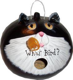 What Bird? Gourd