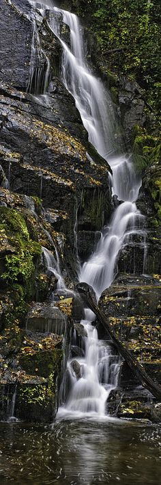 Waterfall, Great Smoky Mountain National Park,North Carolina by Tom Croce