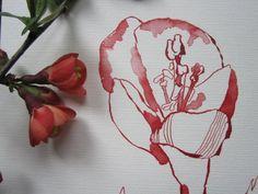 Little Blossoms  www.susannehaun.com