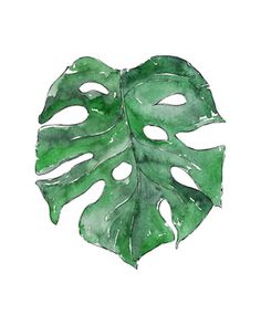 MONSTERA LEAF - watercolor illustration by Good Objects