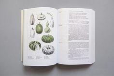 Beautiful Recipe Book