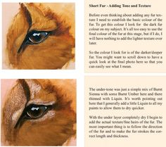 learn to paint fur
