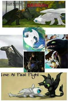 After Toothless became the Alpha, Toothless and Hiccup flew all the w… #fanfiction Fanfiction #amreading #books #wattpad