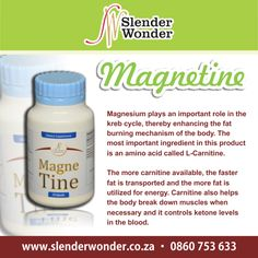 Slender Wonder, Hcg Recipes, Clinical Research, Weight Management, Amino Acids, Fat Burning, Weight Loss, Lifestyle