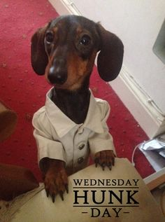 Today's Wednesday Hunk is Kenneth from Kenfig Hill, South Wales.