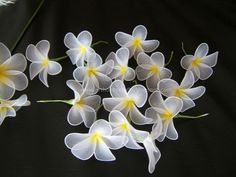 Art Hobby Crafts: Stocking flowers - Plumeria