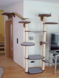 Kratzbaum Design Wohnung : 2er set design wandregal mit versteckter halterung frei schwebend eckregal wei 25x25x3 ~ Heinz-duthel.com Haus und Dekorationen