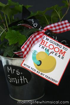 Darling idea for 1st Day of School with FREE Printable Tag.  Love it! #school