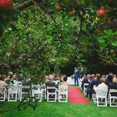 Rathsallagh House, Co Wicklow, Ireland. Venue of the Month January 2017 Perfect Wedding, Our Wedding, Country House Wedding Venues, Blue Books, Wedding Gallery, Countryside, Ireland, Dolores Park, Table Decorations