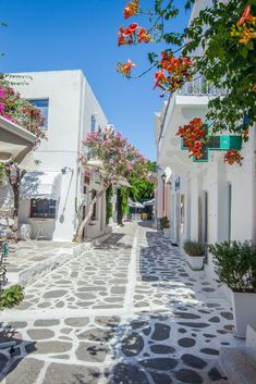 Parkikia Paros. Greece  Traveling the world with your laptop and thinking about living in Greece? This guide will keep you off the beaten path and on a budget. How to find an apartment in Greece, what to eat in Greece, Cafes in Greece, Greece Digital Nomads, Digital Nomad, World Travel, Europe Travel, Greece, Travel, Remote Work, Travel Guide, Local Guide, Greek Islands, Athens Greece, Live Abroad, Wanderlust Photography