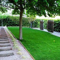 Exterior area. Grass & tree.