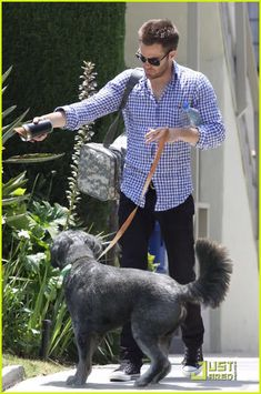 ontd_startrek: Chris Pine walks Noah, and we Pinto shippers doesn't need our tinhats anymore!!!