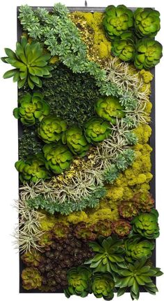 Modern and Elegant Vertical succulent Wall Planter Pots Ideas Succulent Wall Planter, Cacti And Succulents, Planting Succulents, Planting Flowers, Planter Pots, Succulent Frame, Succulent Wall Gardens, Succulent Landscaping, Succulent Gardening