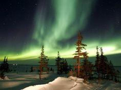 The Northern Lights ~ Churchill, Manitoba, Canada