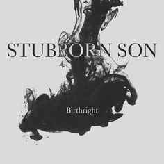 Stubborn Son Birthright compact disc