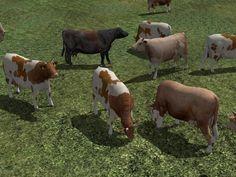 Kinematisch animierte (domestizierte) Tiere ab EEP 9.1 im Sparset