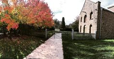 Autumn is definitely in the air at the Cobb and Co Buangor. If you're looking for a wedding venue that's oozing character and charm check this joint out. #weddingvenue #courtyardwedding #gardenwedding #countrywedding #historicalbuilding #countryvictoria #weddinghire #eventhire #daylesford #ballarat #warrnambool #horsham #andanywhereinbetween #autumnwedding by thelittleblacksheephireco
