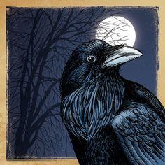 illustration print: Crow Season (black crow / raven with full moon & tree… Crow Art, Raven Art, Bird Art, Raven Totem, Choucas Des Tours, Memes Arte, Quoth The Raven, Jackdaw, Crows Ravens