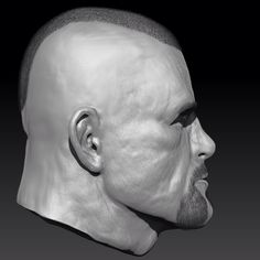 Side. 3D Face modeling. MMA figther. Cgi scultping