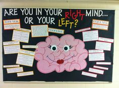 Are You In Your Right Mind Or Your Left Psychology Bulletin Board