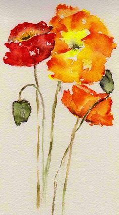 Watercolor Painting - Poppy Trio by Anne Duke