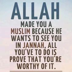 Ya Allah, please grant all Muslims in Jannat ul Firdaus Ameen #Jannah #Islam