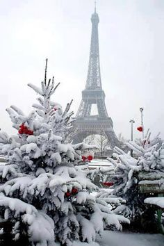 ღღ Winter in Paris