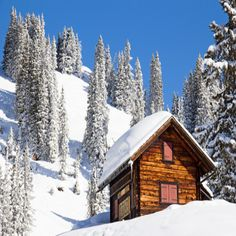 Alaska Homestead: Living in a Cabin up North - Nature and Environment - MOTHER EARTH NEWS