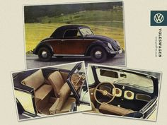 History of the Beetle...
