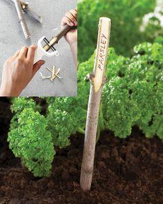 Twig Plant Marker