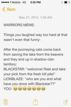 So true!! It's like: DON'T FALL FOR IT GUYS, IT'S AN IMPOSTER. ~Birdsong231 #Lionblaze #Blackstar