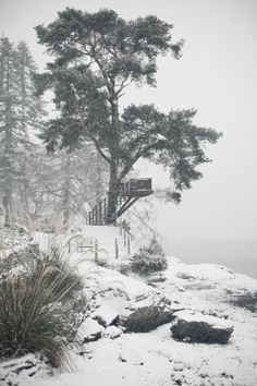 Location - Shoot - Eat - Sleep Snow at the viewing deck at The Lodge on Loch Goil - view from the summerhouse : Going Away, Luxury Accommodation, The A Team, Tree Houses, Eat Sleep, Scotland, September, Castle, Heaven