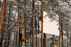 The Tree Hotel in Harads, Sweden  This guest house  is called  The Mirrored Cube